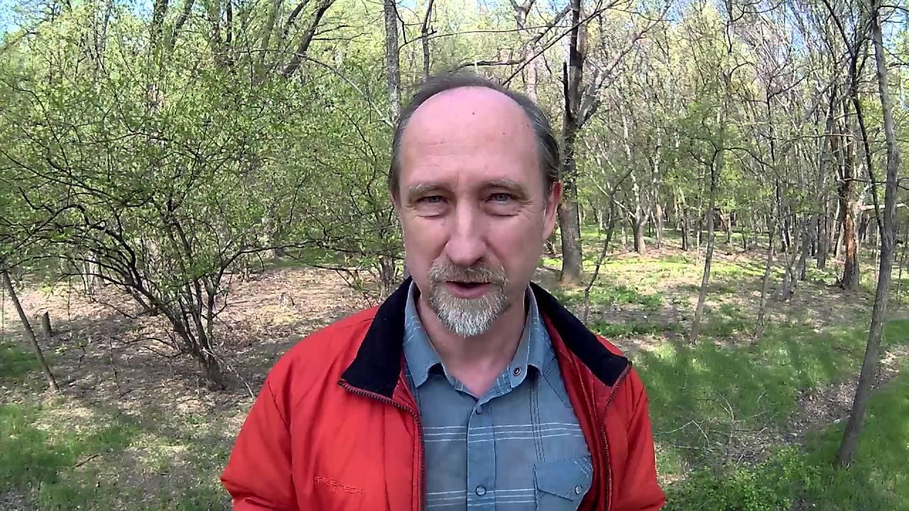 Игорь Артёмов
